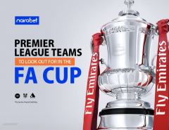 Premier League Teams in FA Cup