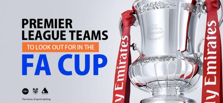 Premier League Teams in FA Cup
